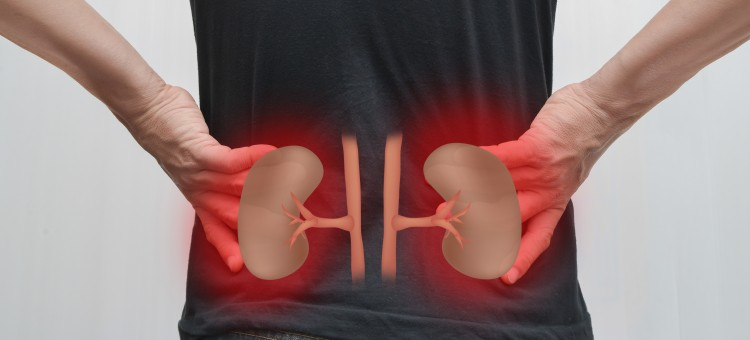 Have Chronic Kidney Disease? Time to Change Your Diet